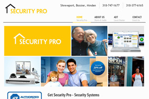 Security Pro Website Development